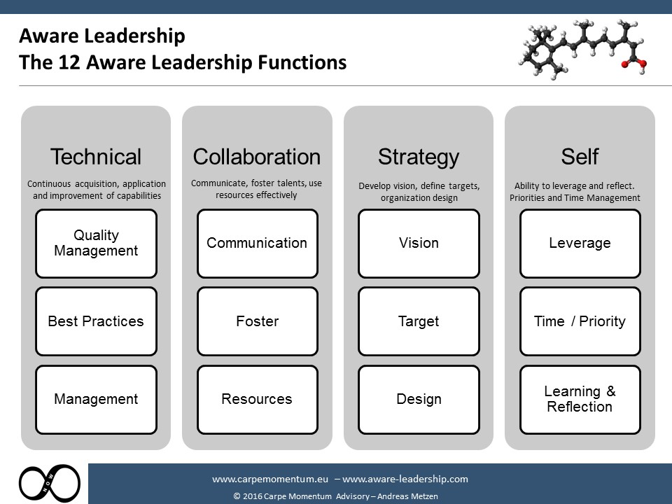 12 Aware Leadership Functions